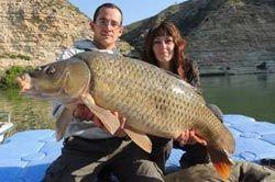 pescar-ebre-carpa-carpfishing-camping-portmassaluca