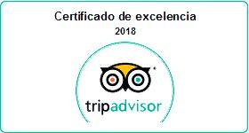 excelence certificate from tripadvisor