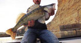 Pêche du sandre en Espagne