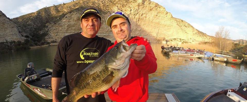 pesca del blackbass en el río ebro, en el pantano de ribaroja