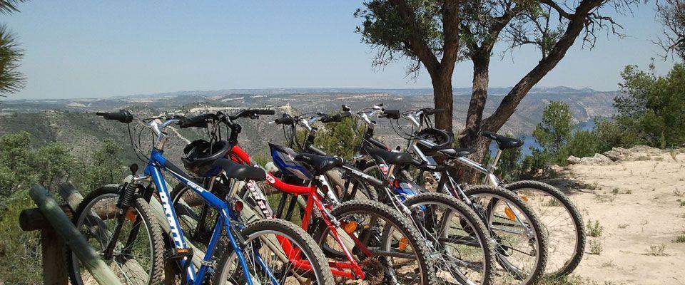 rutas con bicicletas de alquiler disponibles en el camping portmassaluca