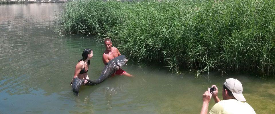 pesca de siluros en el pantano de ribaroja desde las instalaciones del camping