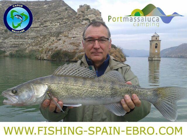 oferta-pesca-spain-ebro-grande-lucioperca-2016