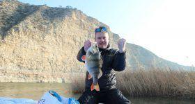 pesca de percas desde el camping al lado del río ebro